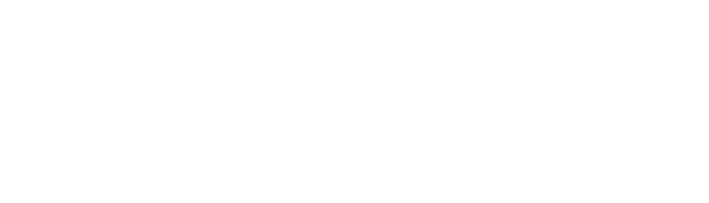 Methodist Health System Logo