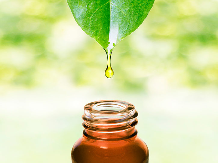essential oil drop falling from leaf into bottle