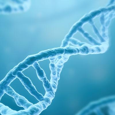 Strand of genetic code
